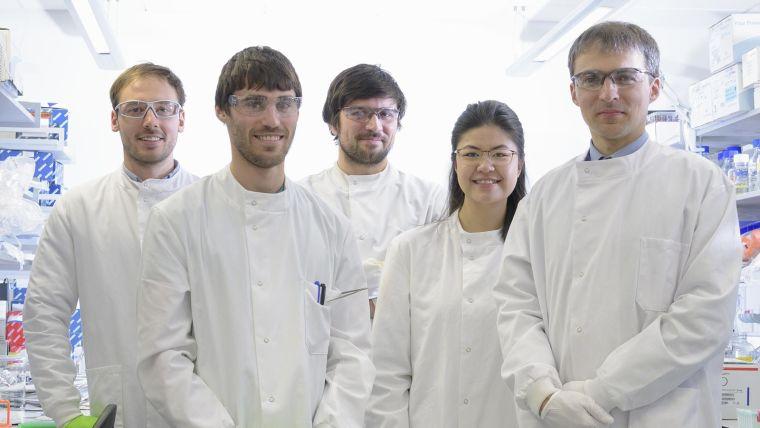 Kriaucionis group | Epigenetic mechanisms