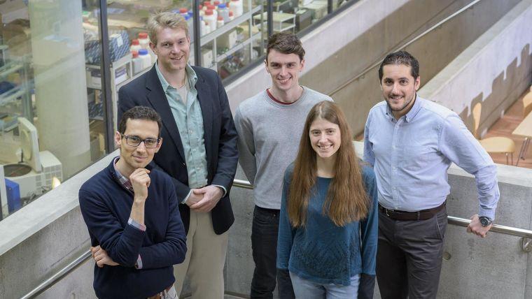 Schuster-Böckler group | Computational genomics