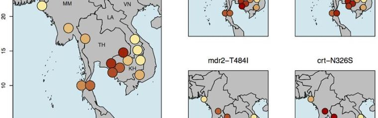 Maps of South East Asia showing drug resistance