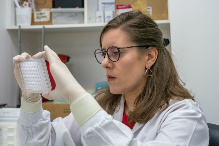 Malaria Lab Senior Post-doc Andrea Ruecker at work on the sexual stages of the malaria parasite