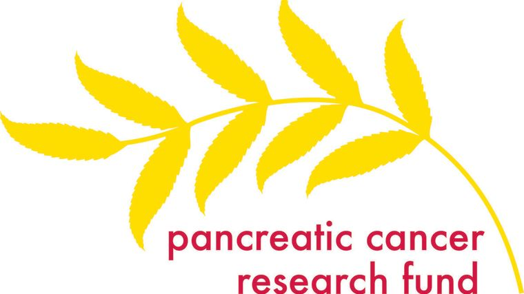 Grant success for pancreatic cancer research