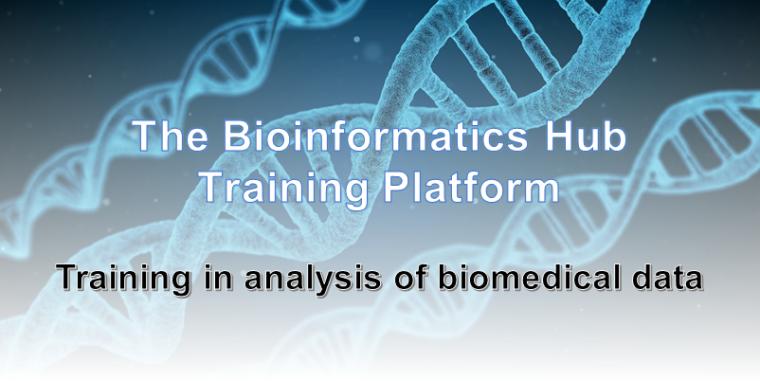 Bioinformatics Hub