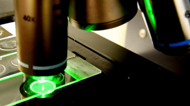 Microscopy lead image
