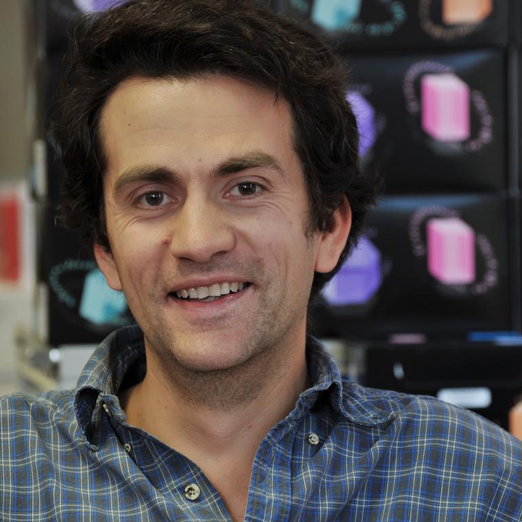 Professor Radu Aricescu