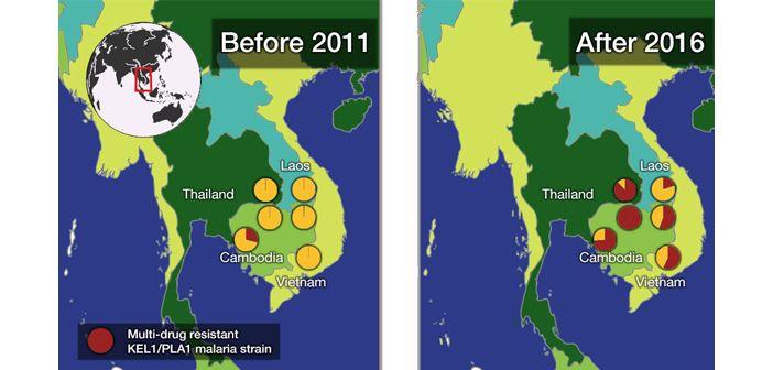 Multidrug resistant malaria spreading in se asia