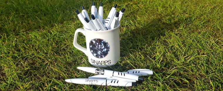 SINAPPS2 labelled cup and pens on grass