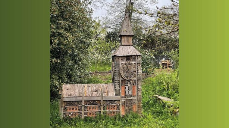 Photo of a 'bug hotel' that's very large and called 'bug ben'...