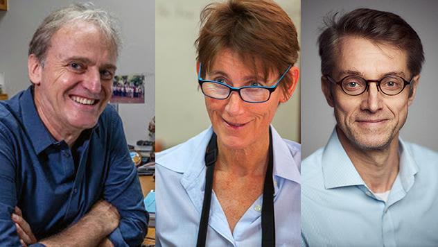 Arjen Dondorp, Rose McGready & Peter Horby