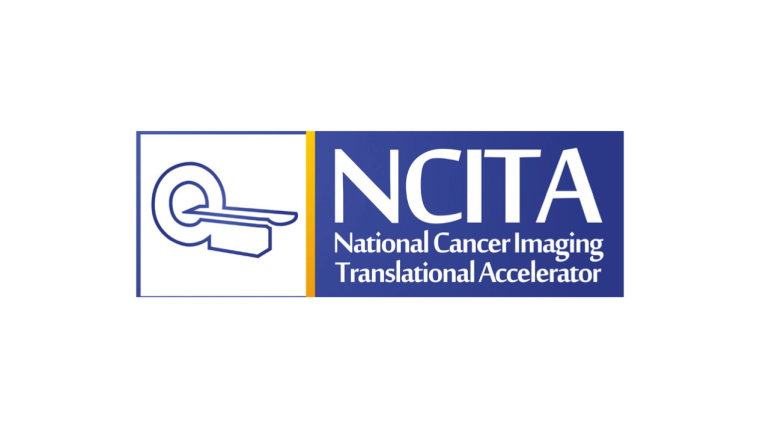 A network of medical imaging experts working towards discovery, validation and adoption of cancer imaging biomarkers