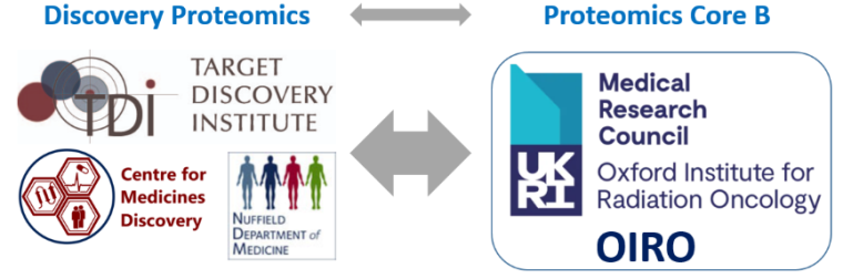 Figure 1: Discovery proteomics as part of the Kessler group in the TDI/CMD will provide the Proteomics Core B for the MRC/UKRI OIRO Unit. This reflects substantial added value to OIRO's research programmes