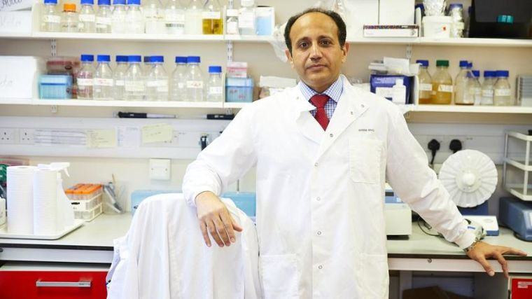 Ahmed Group Closer To Finding The Cell Of Origin For Ovarian Cancer Mrc Weatherall Institute Of Molecular Medicine