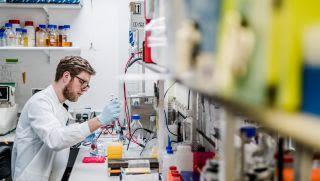 Townsend Group: Molecular Immunology