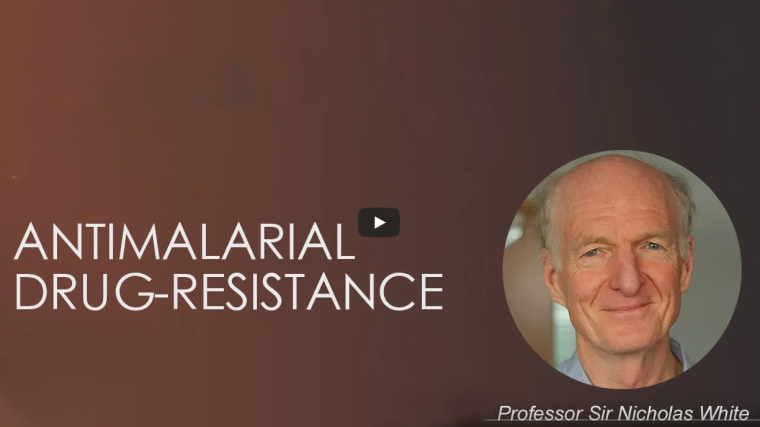 Screenshot of the video interview of Professor Sir Nick White, with the text Antimalarial Drug Resistance