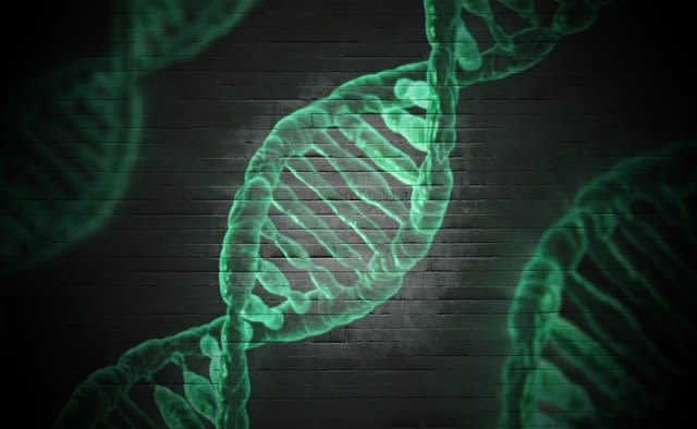Schematic of DNA