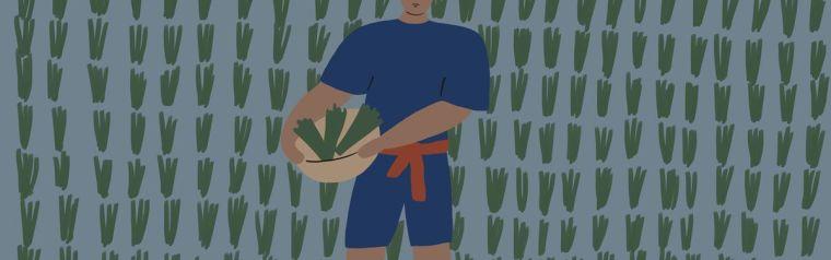 Drawing of a farmer