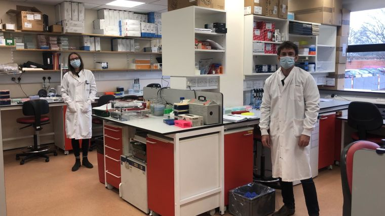 Image shows researchers in the lab - socially distanced.