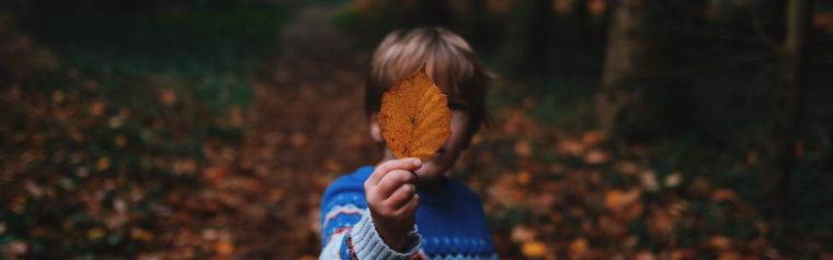Boy stood in the woods holding an autumnal leaf over his face.