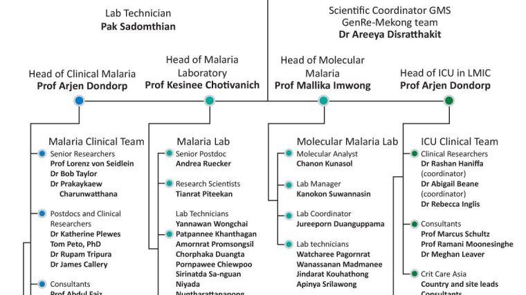 https://www.tropmedres.ac/units/moru-bangkok/malaria/our-team/malaria-critical-illness-organisation-chart