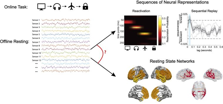 Top left: images describing an online task. Bottom left: offline resting state MEG signals. Right: replay of events and resting state networks.