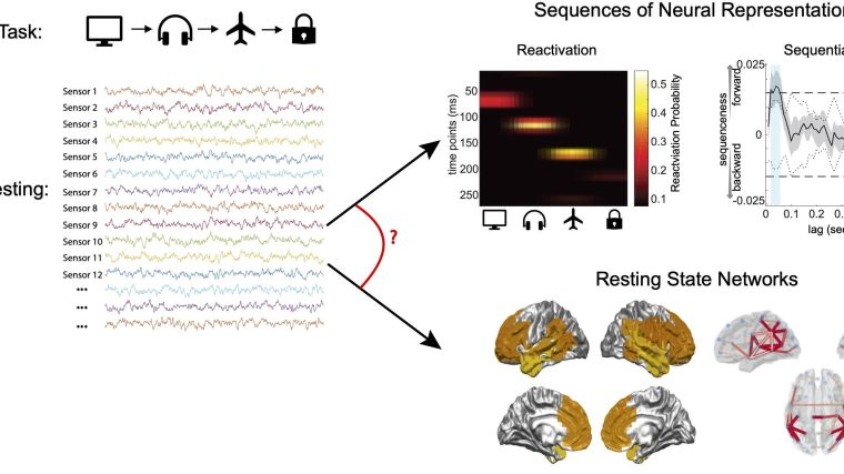 Resting state networks in meg
