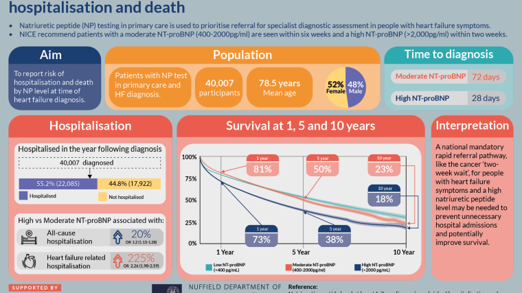 An infographic highlighting the main findings and conclusions of the study