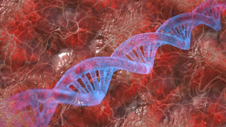 A stylised graphic showing a DNA double helix overlain on blood vessels