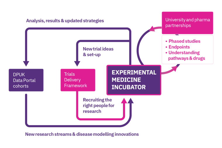 An infographic showing how the Experimental Medicine Incubator works and interacts with DPUK's other workstreams
