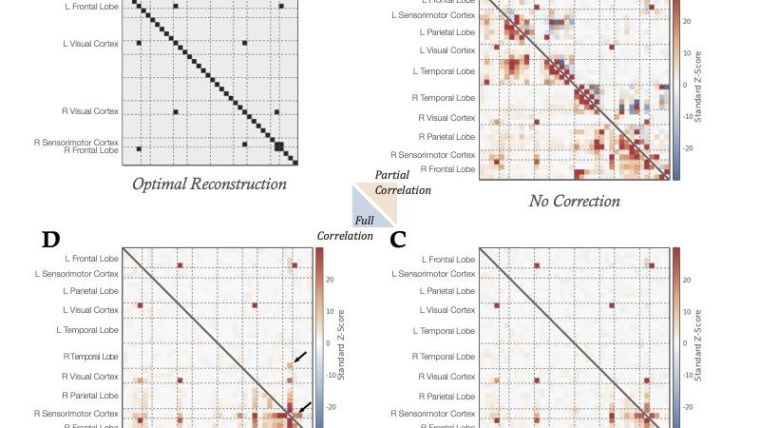 Parcellation and network analysis