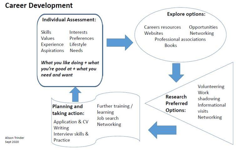 Career development diagram. Transcript is below the image.