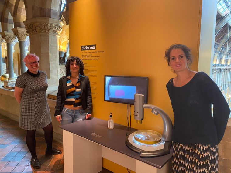 The team exhibit one of the sample sections in the museum. (From left to right) Rhiannon Cook, Dr Ida Parisi, and Dr Bryony Scott