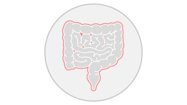 Human inflammatory bowel disease icon