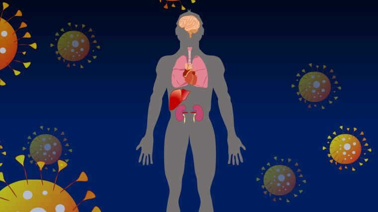 Schematic drawing showing body with internal organs, surrounded by novel coronavirus particles.