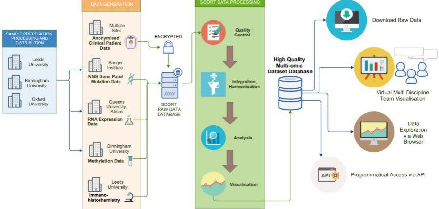 SCORT data process