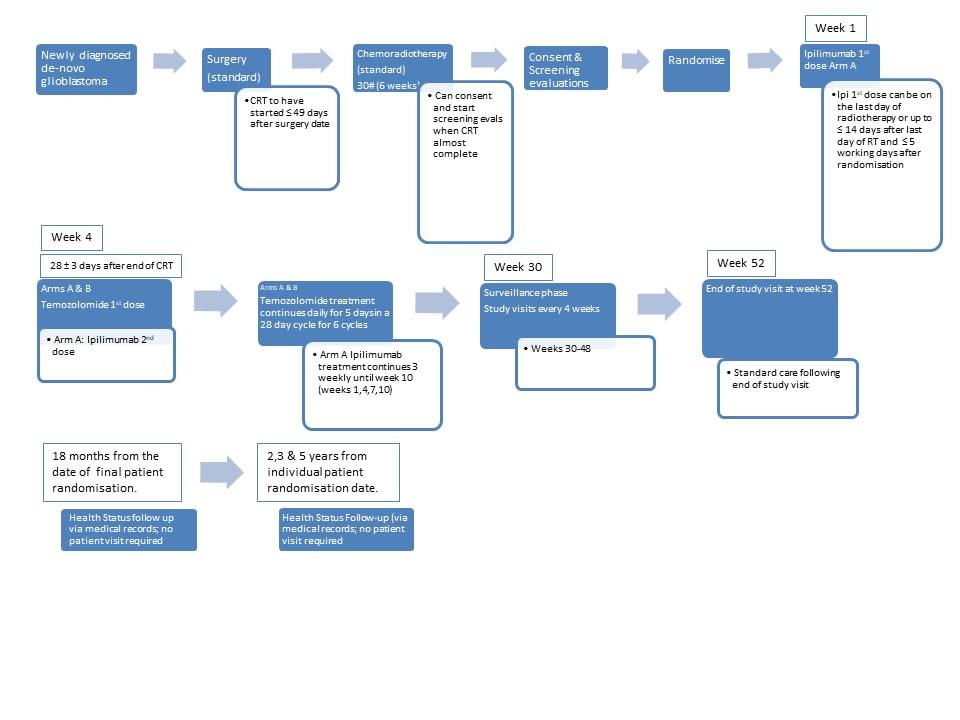 Ipi-glio  Study Schema