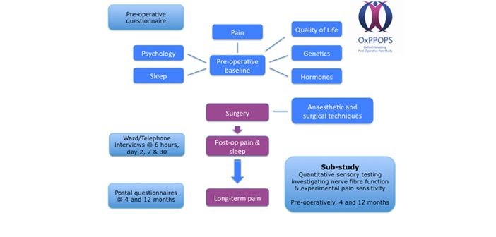 The aim of OxPPOPS is to identify the incidence and predictive factors for the development of persistent pain after surgery. We have just finished recruiting a cohort of patients having planned caesarean sections.