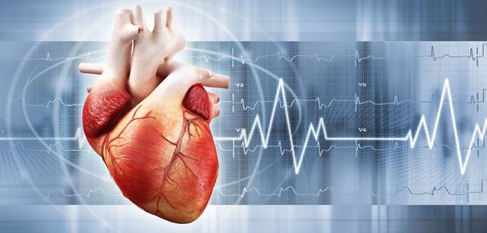 Cardiac or cardiovascular research investigates diseases and surgical procedures of the heart or great vessels,