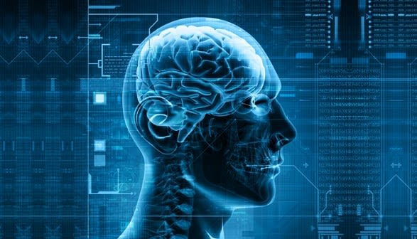 Our work focuses on the nature of thought, consciousness and cognition. We examine brain structure and operation, specifically of neuronal and cortical mechanisms, to determine and model the underlying physiological process of perception, decision making and language.