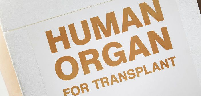 Dr Zeeshan Akhtar has written a post for the Oxford Science Blog about his research into how we could ensure more organs are suitable for transplant.