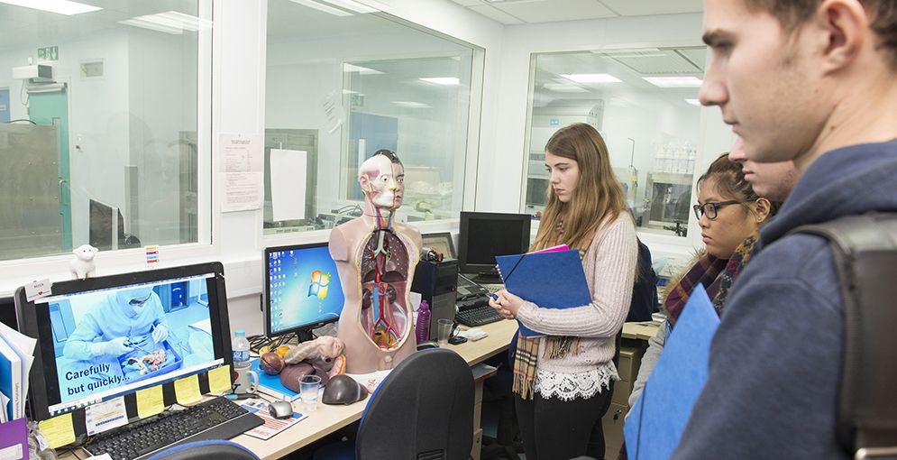 Surgical Sciences launches new work experience programme