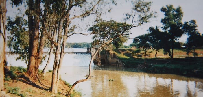 Reminds me of a lake that was where I lived in KINDU… reminds me of our agricultural products and water was helping us in agricultural work. There is also water here in Lubumbashi and it is helping us in many ways.