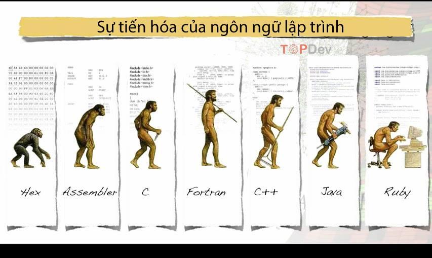 Sự tiến hóa của các ngôn ngữ lập trình.