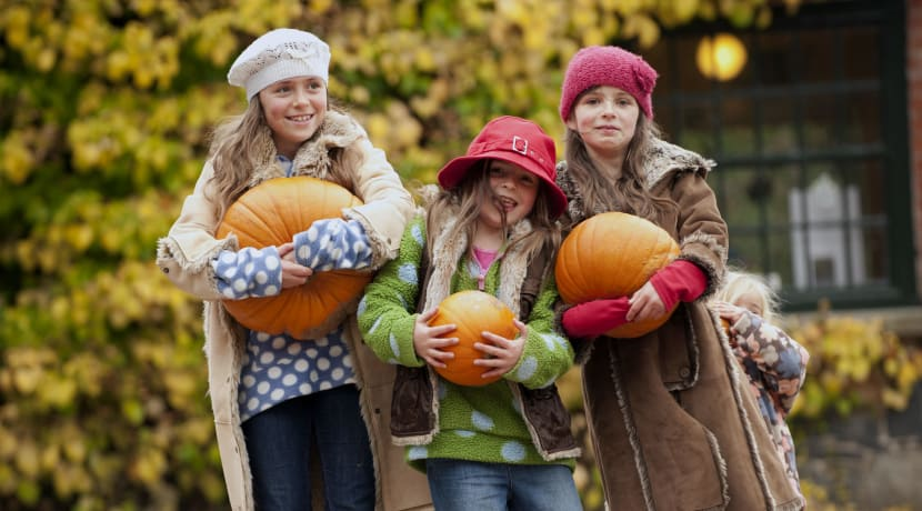 Have an autumnal adventure this half term with the National Trust in Warwickshire