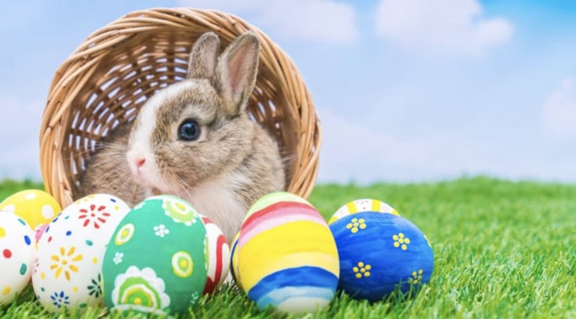 Easter fun at the Kingfisher Shopping Centre throughout half term