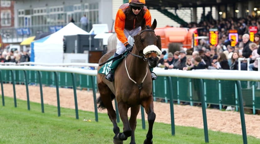Two former winners and rising star set for prestigious Warwickshire horse race