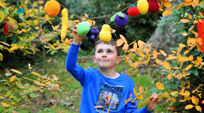 Woolly woodland creatures abound at Attingham Park this half term