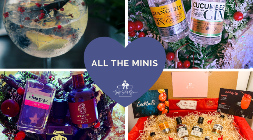 Find the perfect match for your gin-loving loved one this Christmas