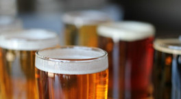 Tamworth Beer Festival returns this month