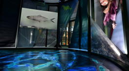 New exhibition in Ironbridge unlocks secrets of River Severn