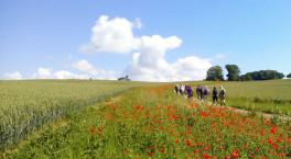 Evesham Walking Festival returns for 2021
