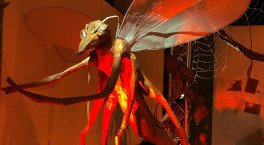 Life-size paper project brings insects from across the globe alive
